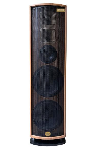 Loa Nghe Nhạc Hát Karaoke Rebel RH800W 5 Đường Tiếng Giá Rẻ