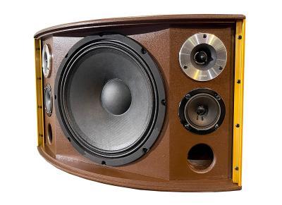 Loa Rebel 601T - Loa Hat Karaoke, Nghe Nhạc Treo Tường  Cao Cấp